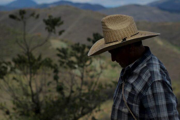 Pronostican Temperaturas De 40 Grados En La Sierra Gorda Queretana