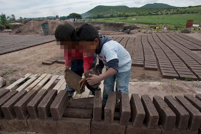 Rescatan a 8 menores que laboraban en granja de Huimilpan Querétaro