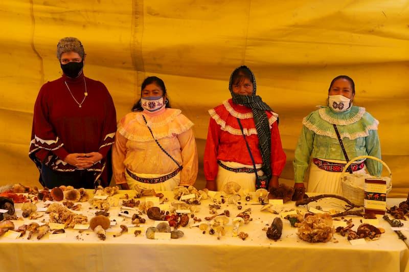 Resalta UAQ importancia cultural de los hongos con Feria semivirtual en Amealco QRO