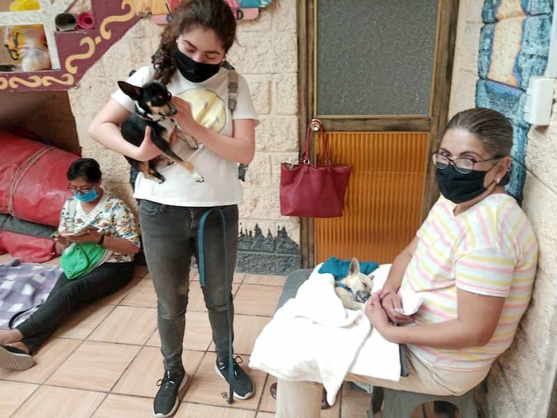 PVEM realizó 5a campaña de Bienestar y Salud Animal en SJR