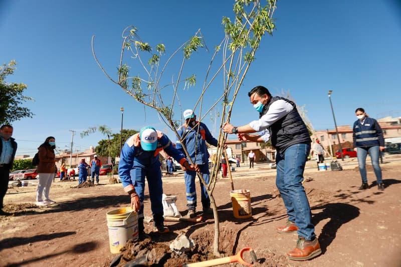 Jornada de reforestación en parque Choles de Cerrito Colorado, Querétaro