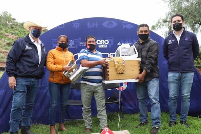 Proyecto de apiarios comunitarios iniciará en 4 municipios del estado